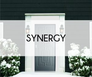 Synergy header image 2